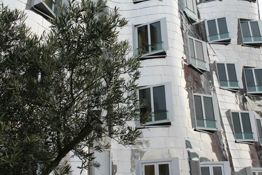 Gehry Gebäude3