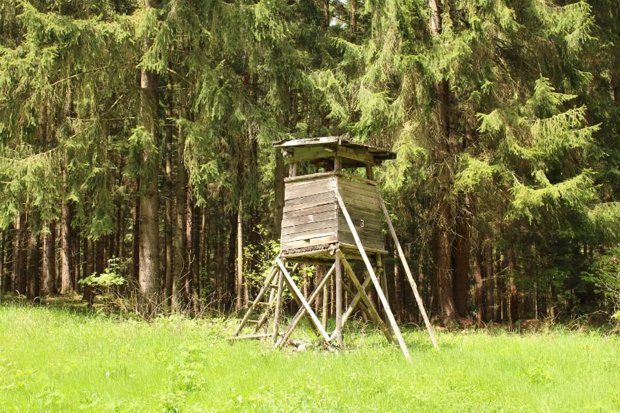 Kraftplatz1.jpg