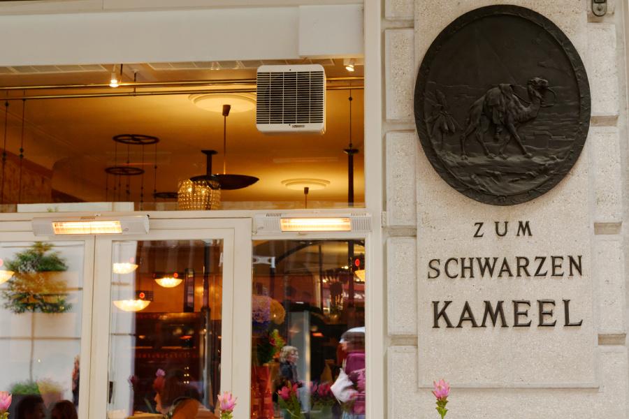 Schwarzes Kameel2